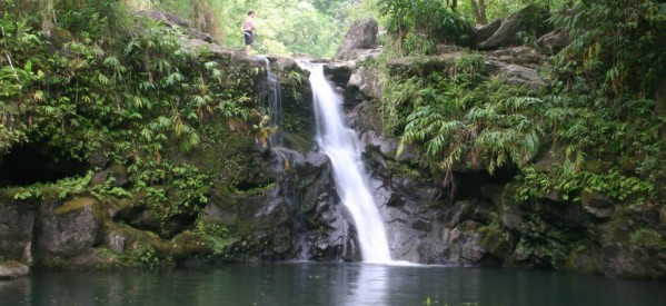 New Micro Hydro Project in India